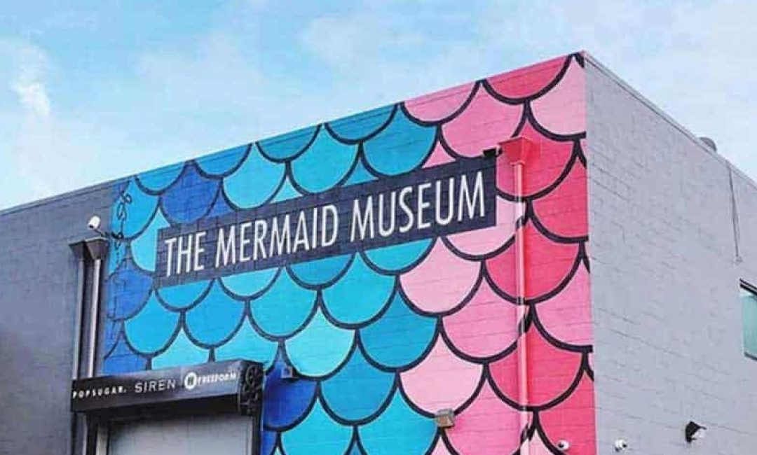 Mermaid Museum's VIP Launch Party
